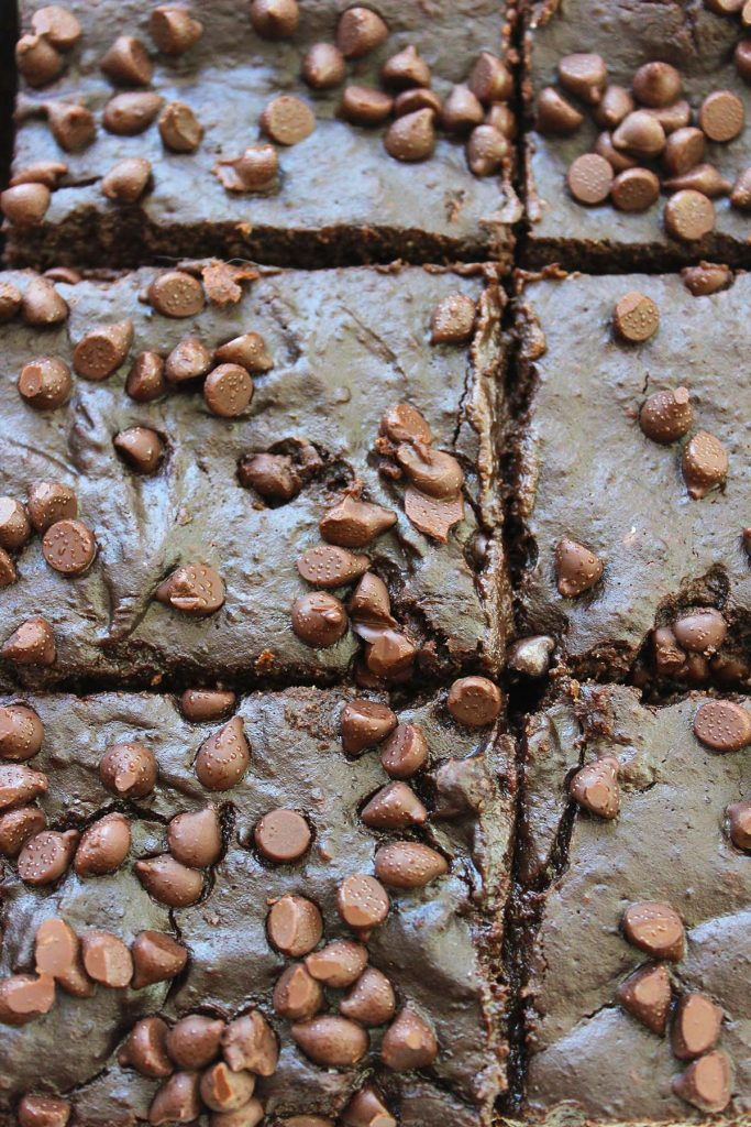 Date brownies with chocolate chips.